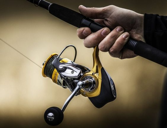 top Spinning Reel